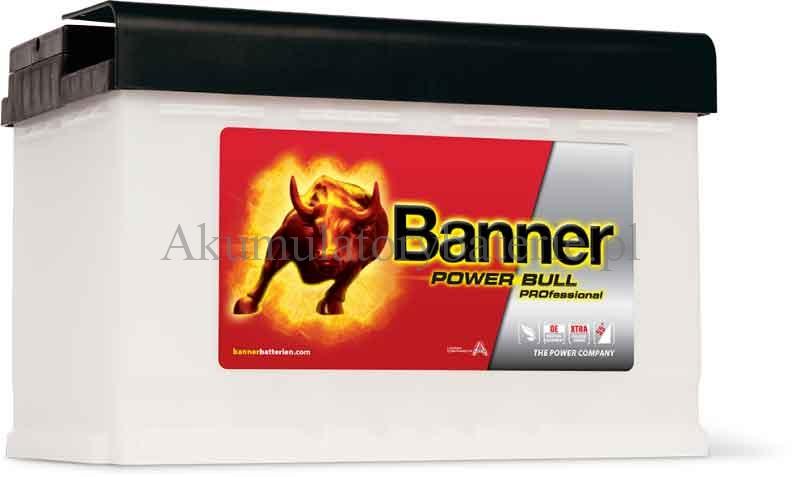 Banner P10040
