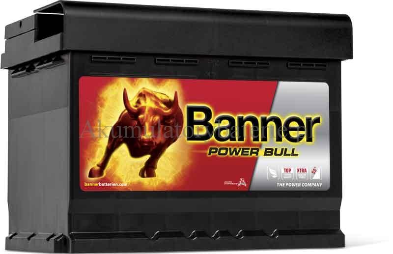 Banner P6009